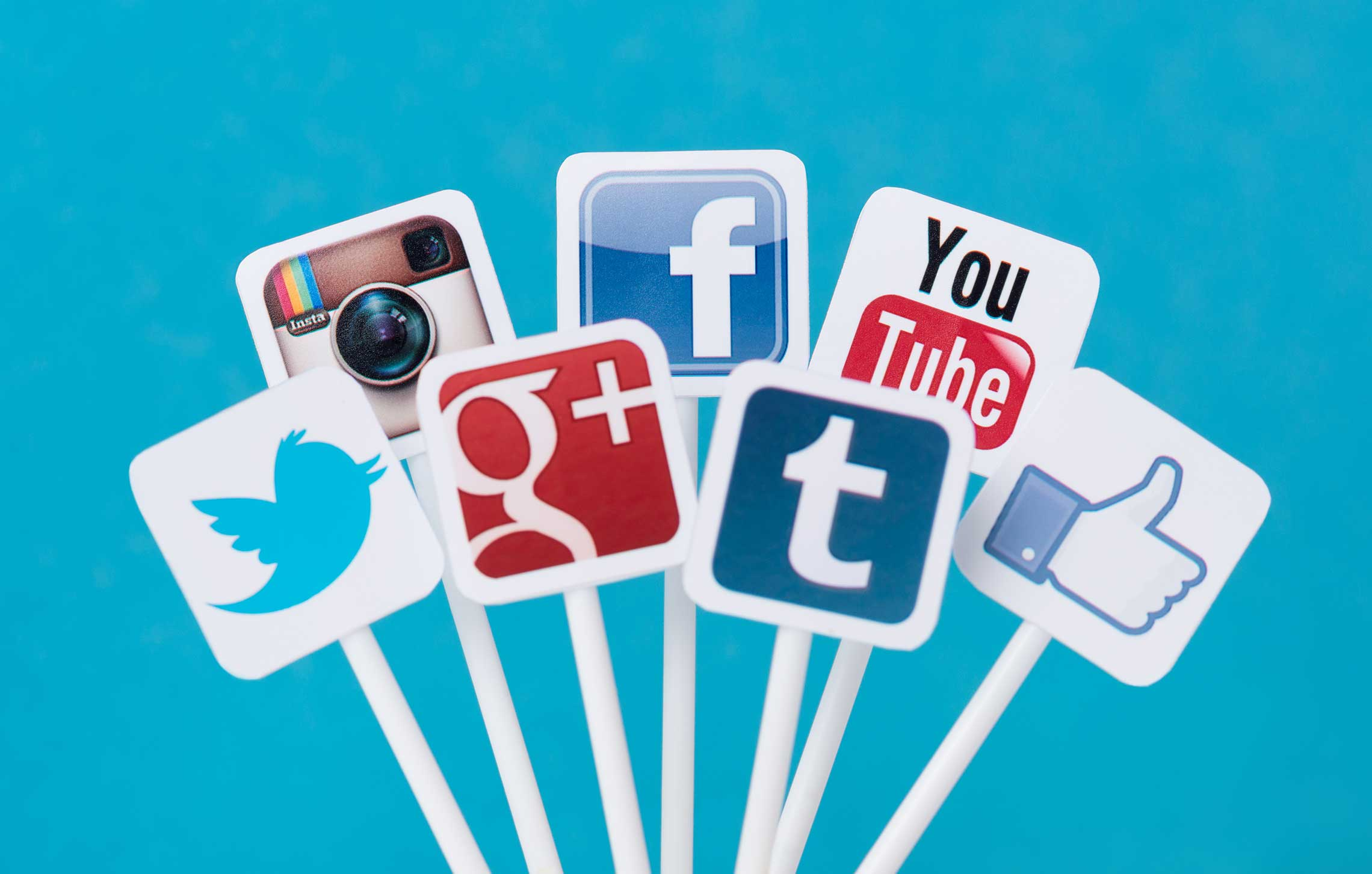 Social Media Management Jacksonville, Florida